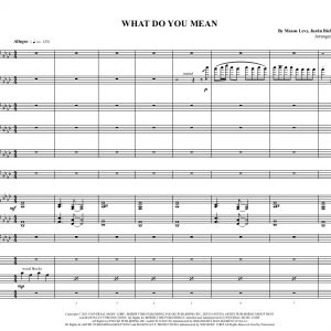 What Do You Mean- Low Brass